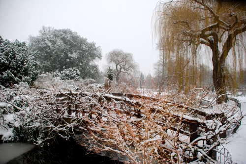 London Winter Scene (Photo M. Germana)